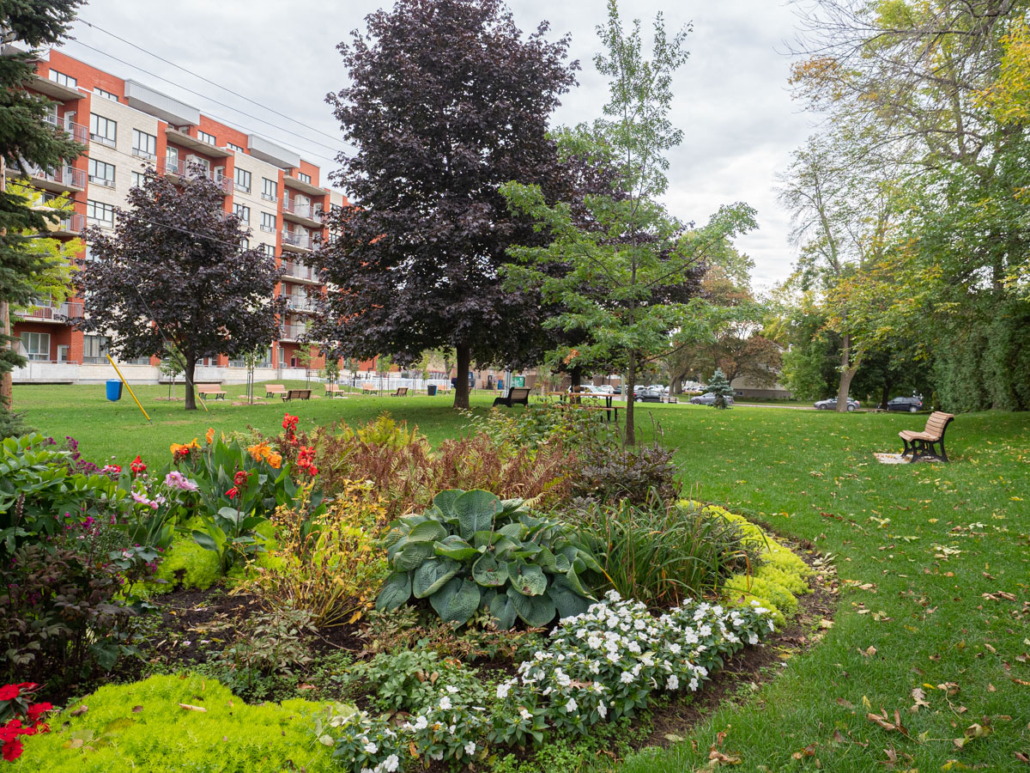 Flower bed, trees and benches at Prud'homme park